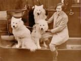 Behaviour in Dogs & Humans – Nature or Nurtured?  Cast YourVote!